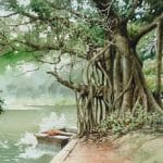 Watercolour Painting of Tree 1988