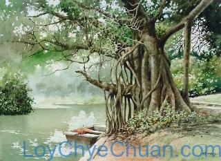 Watercolour Painting of Old Tree 1988